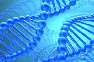 M_Id_125088_Human_Genome