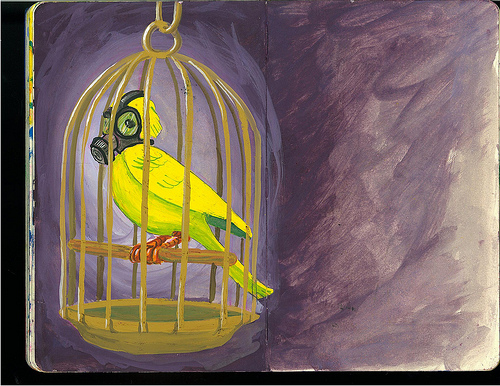 canary-in-coal-mine